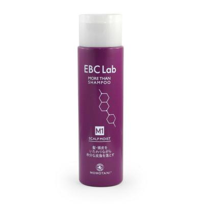 Шампунь для сухой кожи головы MOMOTANI EBC Lab Scalp Clear More Than Shampoo 290 мл: фото